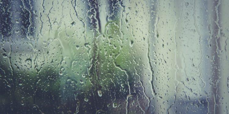 Envisagez au plus vite le traitement contre l'humidité